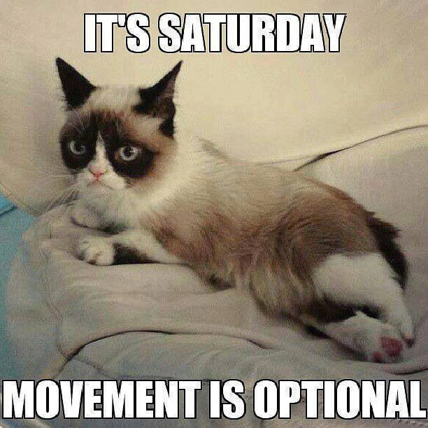 Funny Happy Saturday Quotes: It's Saturday Pictures, Photos, And Images For Facebook