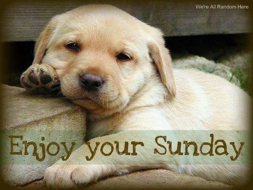 Enjoy Your Sunday Quotes. QuotesGram