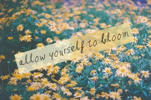 Bloom Quotes Prepossessing Allow Yourself To Bloom Pictures Photos And Images For Facebook