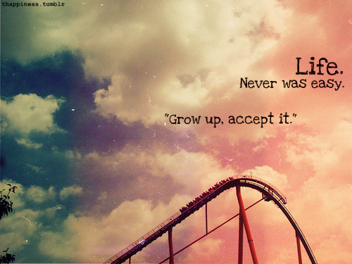 accept it quotes - photo #29