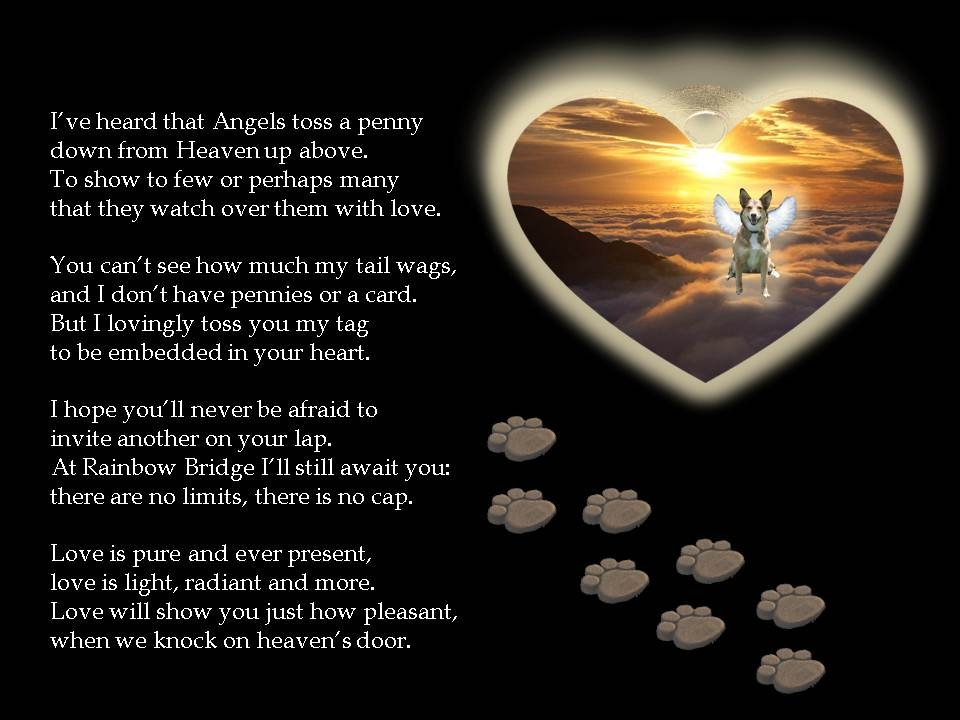 A tag from heaven - dog poem