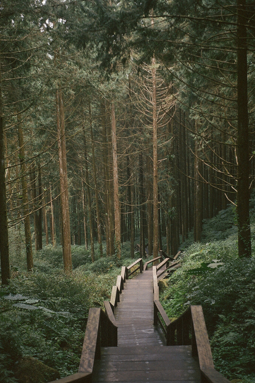 Aesthetic Background Landscape Nature