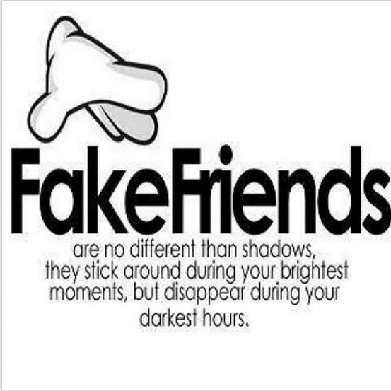 Fake friends pictures tumblr