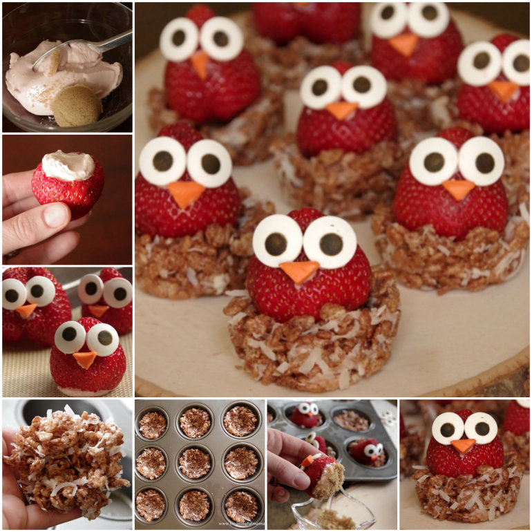 diy owl strawberries pictures photos and images for