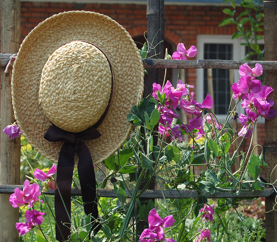 Garden Hat Pictures Photos and Images for Facebook Tumblr