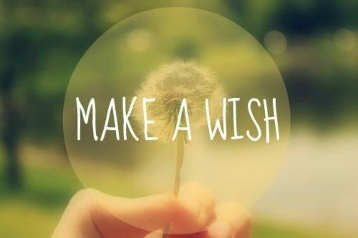 Image result for image of wish