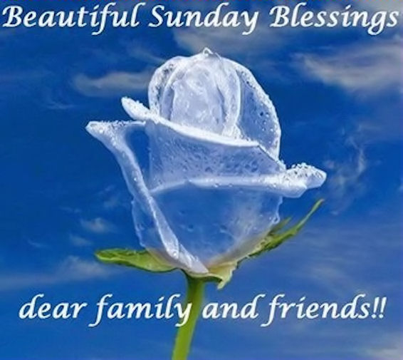 Beautiful sunday blessings pictures photos and images for beautiful sunday blessings pictures photos and images for facebook tumblr pinterest and twitter voltagebd Choice Image
