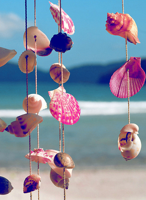 Seashell Wind Chimes Pictures Photos And Images For