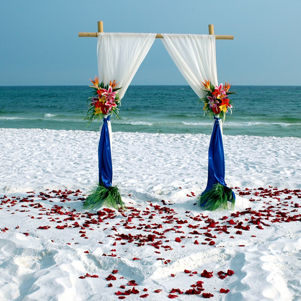 Simple Bamboo Beach Wedding Pictures, Photos, And Images