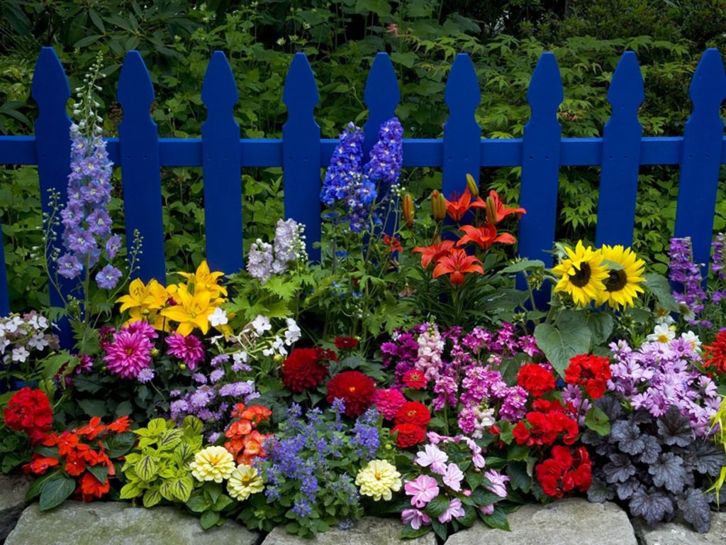 Beautiful Flower Garden Pictures Photos And Images For Facebook