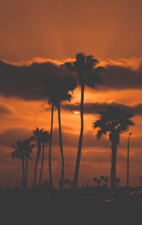 Dark Orange California Sunset Pictures Photos And Images