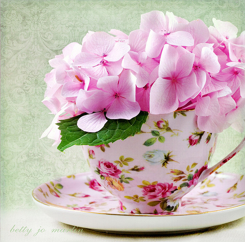 Cup of Pink Flowers