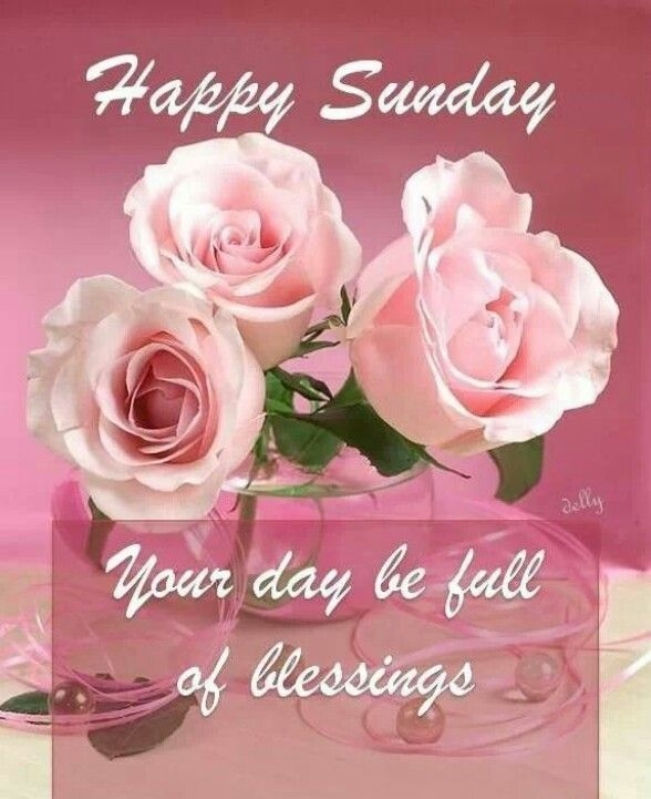 Good Morning And Happy Sunday Love Message : Happy sunday pictures photos and images for facebook