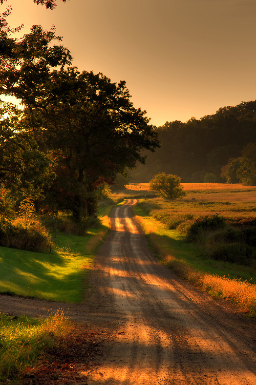 Country Sunset wallpaper   1280x800   #5287