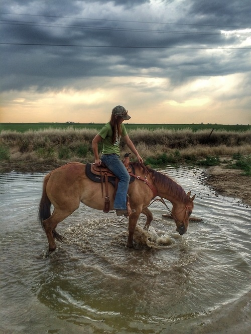 A Country Girl And Her Horse Pictures, Photos, and Images