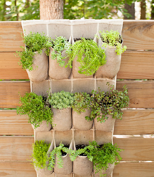 Garden Decorations Diy: Pocket Garden Pictures, Photos, And Images For Facebook