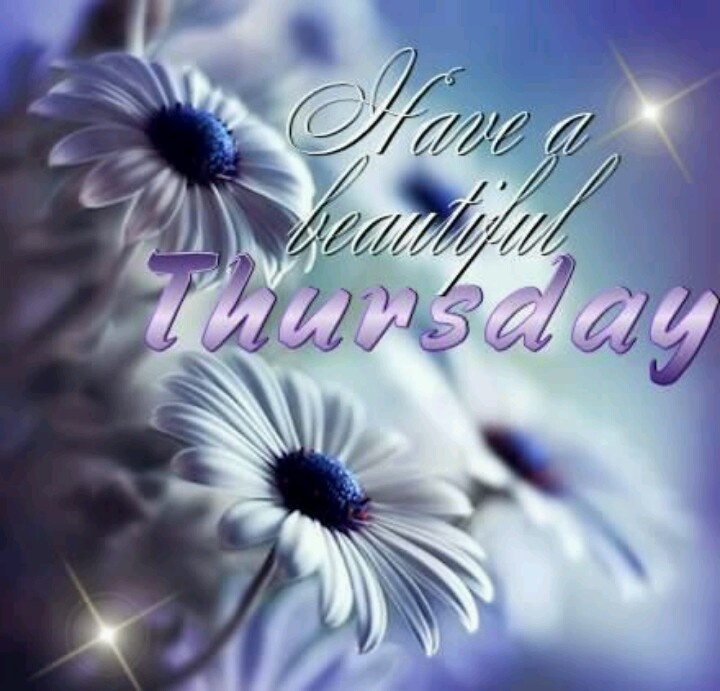 Good Morning Beautiful Thursday Images : Have a beautiful thursday pictures photos and images for