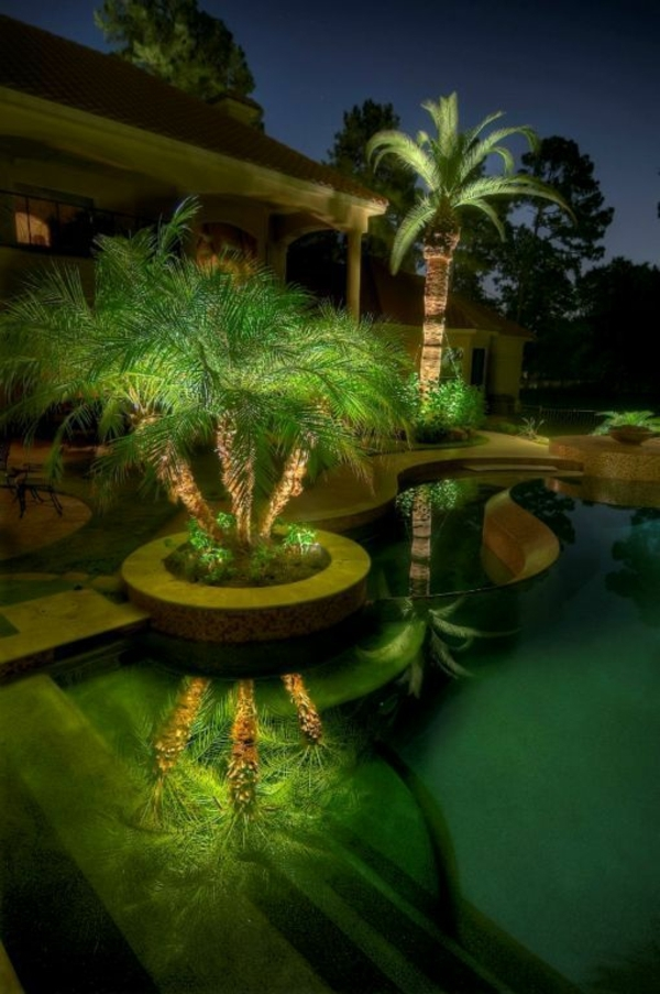 Palm Tree Pool Pictures Photos And Images For Facebook