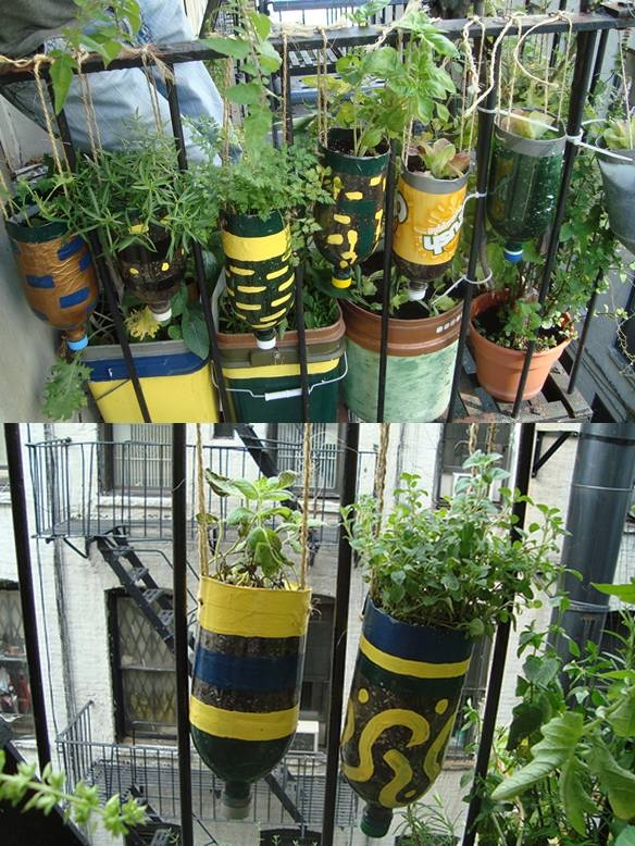 Diy plastic bottle herb hanging garden pictures photos and images for facebook tumblr - Diy projects using plastic bottles ...