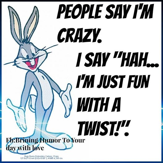 Crazy Funny Quotes