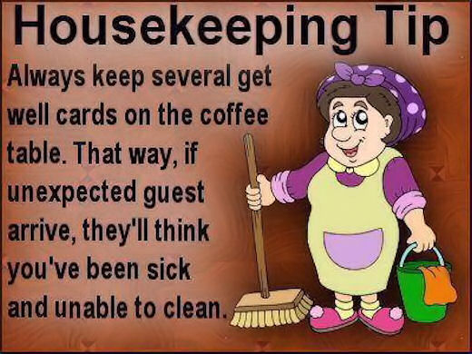 Funny Housekeeping Tip Pictures, Photos, and Images for Facebook, Tumblr, Pinterest, and Twitter