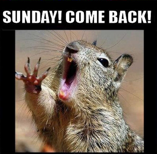 Happy Monday Meme Funny : Sunday come back pictures photos and images for facebook