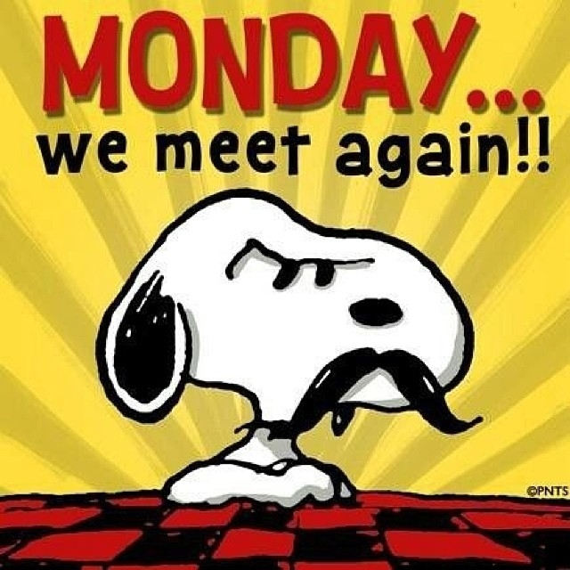 Monday We Meet Again Pictures Photos And Images For