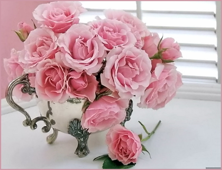 Soft Pink Roses In Silver Kettle Pictures Photos And