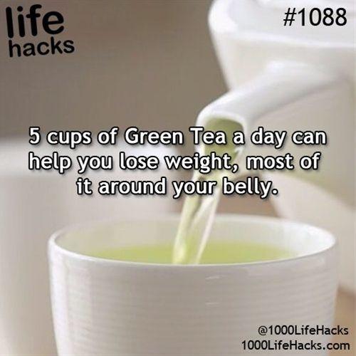 Diet plan lose body fat percentage picture 3