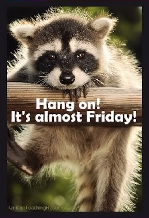 Almost friday, Hang in there and Quotes on Pinterest