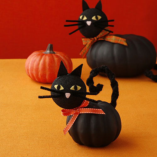 DIY Cat Pumpkins Pictures, Photos, and Images for Facebook ...