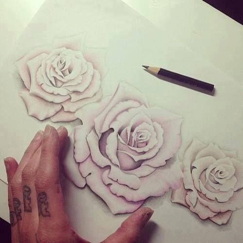 Drawing Roses Pictures...