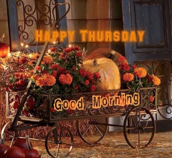 Happy Thursday Good Morning Pictures, Photos, and Images ...