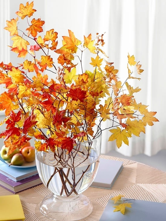 Branches Of Leaves In Clear Glass Vase Pictures Photos