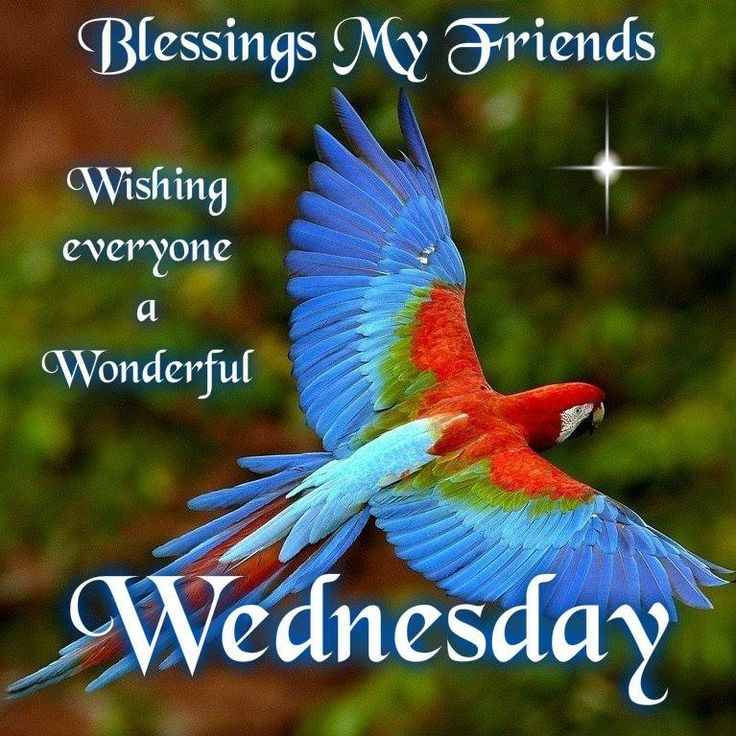 Wednesday Blessings Quotes Pictures Facebook. QuotesGram Blessed Wednesday
