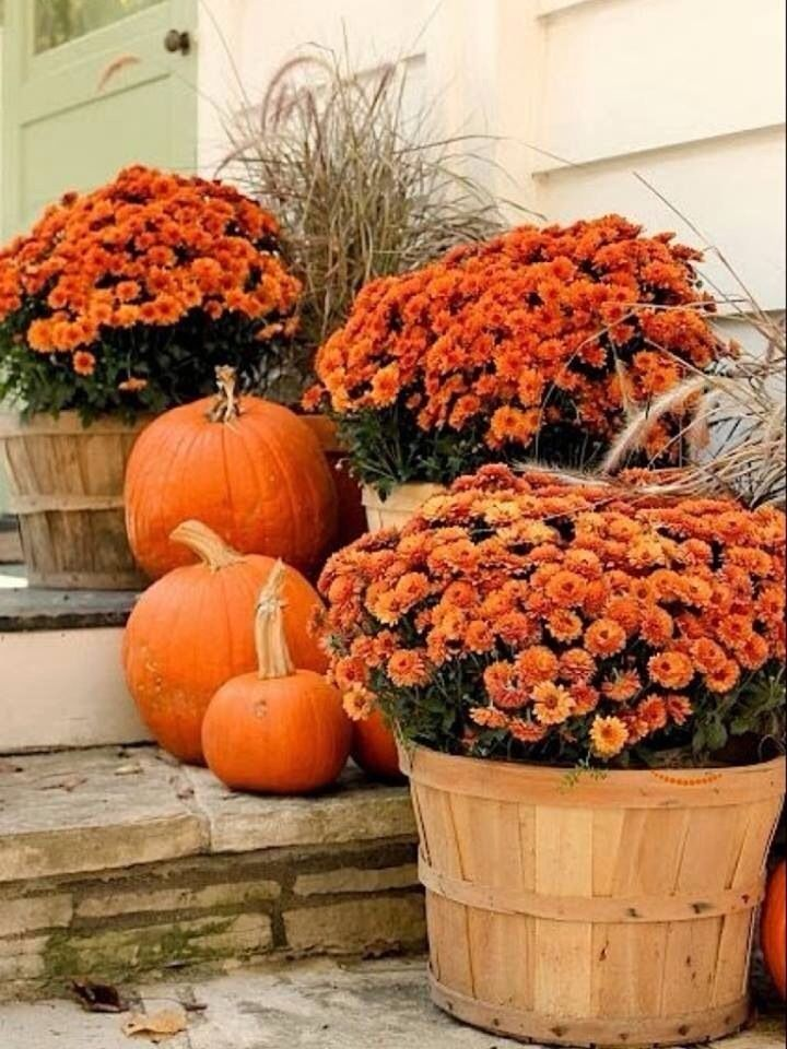 Mums and pumpkins on the porch pictures photos and Fall outdoor decorating with pumpkins