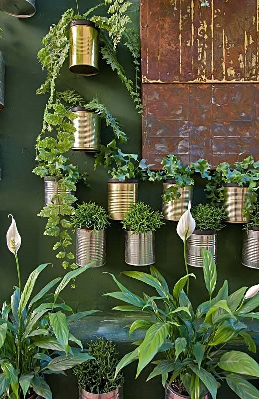 Tin Can Garden Pictures Photos And Images For Facebook
