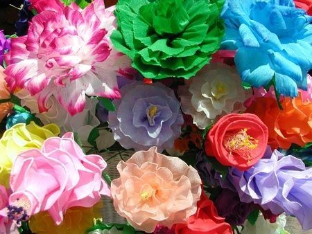 Mexican paper flowers pictures photos and images for facebook mexican paper flowers mightylinksfo