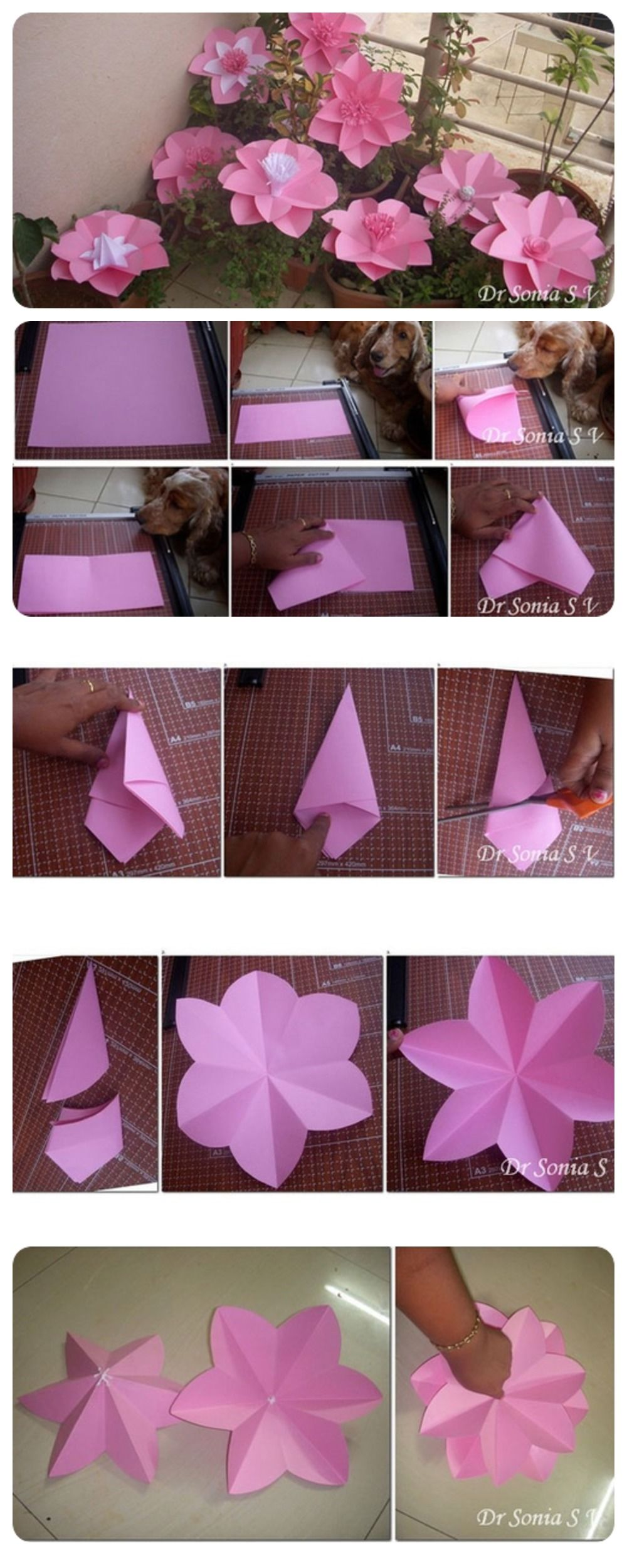 Paper Flowers Tutorial Pictures, Photos, And Images For