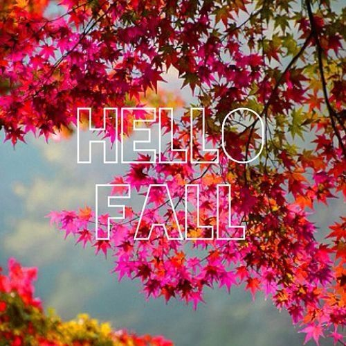 Hello Fall Pictures, Photos, And Images For Facebook
