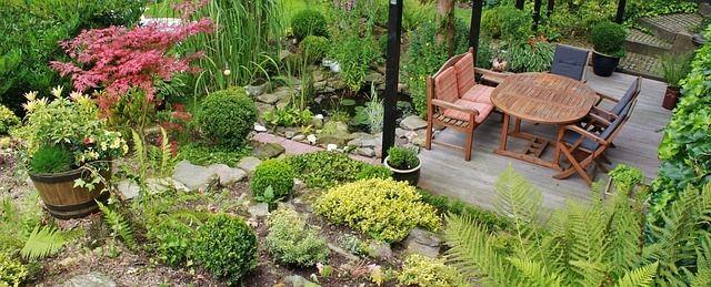 quaint little garden - Little Garden