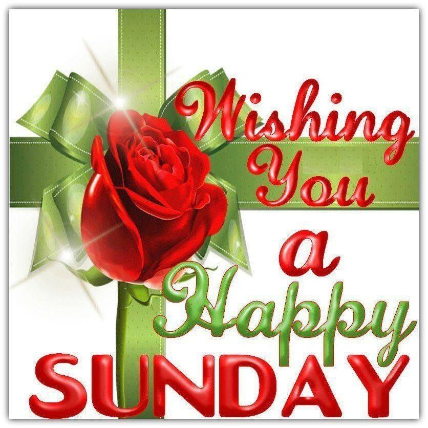 Good Morning And Happy Sunday Love Message : Wishing you a happy sunday pictures photos and images