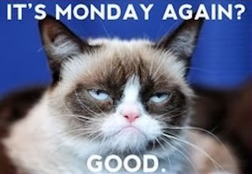 Grumpy Cat Easter Meme