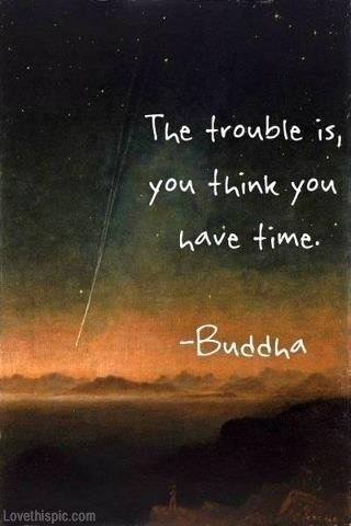 Buddha Quotes Tumblr Magnificent You Think You Have Time Buddha Quote Pictures Photos And Images