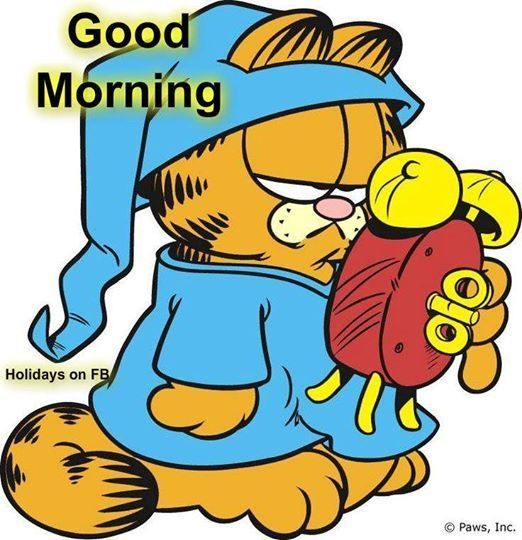 Good Morning Garfield Pictures Photos And Images For Facebook Tumblr Pinterest And Twitter