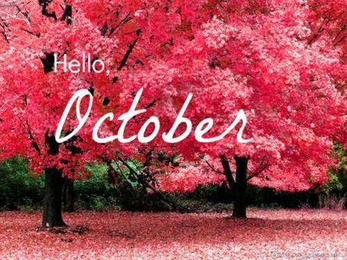 hello october pictures  photos  and images for facebook  tumblr  pinterest  and twitter