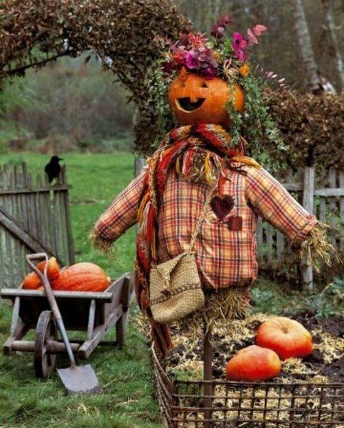 Pumpkin scarecrow pictures photos and images for facebook tumblr pinterest and twitter - Comment faire un epouvantail ...