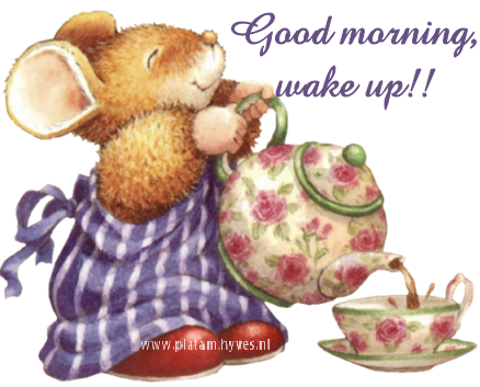 Image result for good morning wake up images