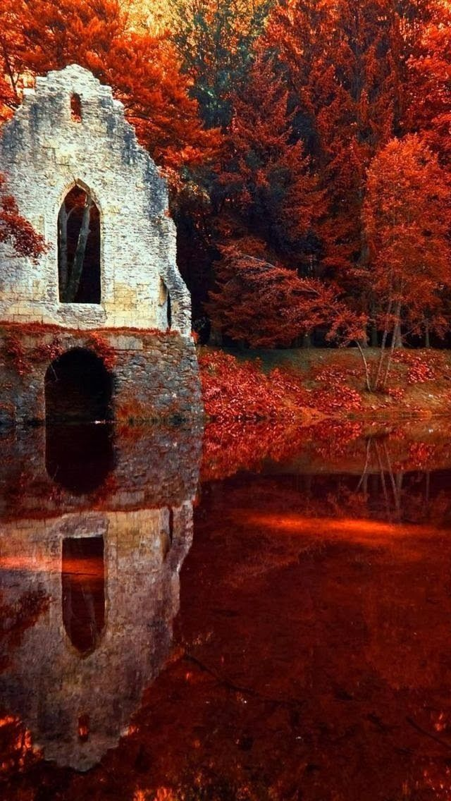 Red Autumn In Chamonix Rhone Alpes France Pictures