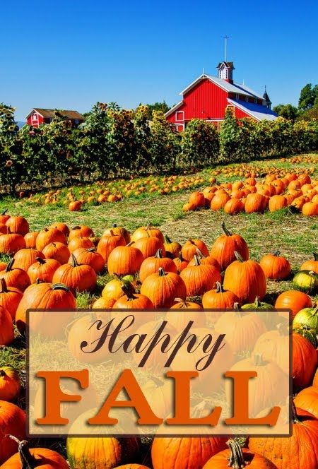 Happy Fall Pictures Photos And Images For Facebook